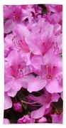 Pink Azaleas Summer Garden 6 Azalea Flowers Giclee Art Prints Baslee Troutman Beach Towel