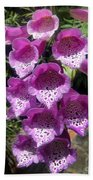 Pink Bell Flowers, Close-up. Foxglove 02 Beach Towel