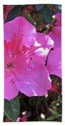 Pink Bevy Of Beauties Beach Towel
