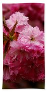 Pink Blooms Beach Towel