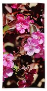 Pink Blossoms 031015 Beach Towel