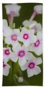 Pink Bright Eyes Garden Phlox Beach Sheet