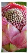 Pink Bud Waratah Beach Towel