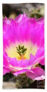 Pink Cactus Flower Beach Towel