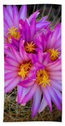 Pink Cactus Flowers Square  Beach Towel