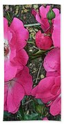 Pink Climbing Roses - Digitally Enhanced Beach Towel