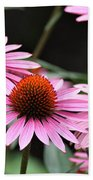 Pink Coneflowers Beach Towel