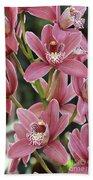 Pink Cymbidium Orchid #3 Beach Towel