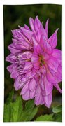Pink Dahlia 2 Beach Towel