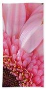 Pink Daisy Close-up Beach Towel