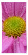 Pink Daisy With Raindrops Beach Towel