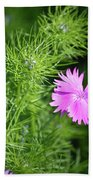 Pink Dianthus With Nigella Buds Beach Towel