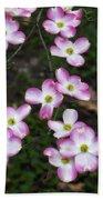 Pink Dogwood Mo Bot Garden Dsc01756 Beach Towel