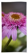 Pink Double Delight Coneflower Beach Sheet