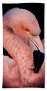 Pink Flamingo Portrait Beach Towel