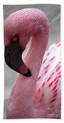 Pink Flamingo Profile Beach Towel