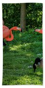 Pink Flamingos And Imposters Beach Towel