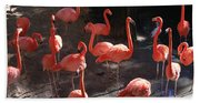 Pink Flamingos  Beach Towel