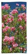 Pink Flowering Shrub Beach Towel