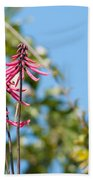 Pink Flowers At Coba Beach Towel