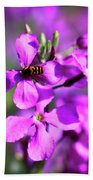 Pink Flowers With Bee . 40d4803 Beach Towel