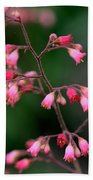 Pink Heuchera Flower 1 Beach Towel