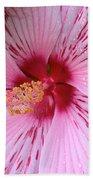 Pink Hibiscus Macro Beach Towel