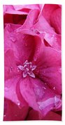 Pink Hydrangea After Rain Beach Towel