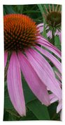Pink In The Garden Beach Towel