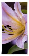 Pink Lilly Beach Towel