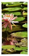 Pink Lily 14 Beach Towel