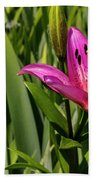 Pink Lily  Beach Towel