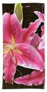 Pink Beach Towel by M Montoya Alicea