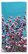 Pink Magnolia Splendor Beach Towel