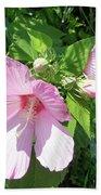 Pink Marsh Mallow Wildflower Beach Towel