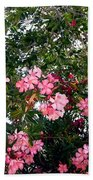Pink Oleanders Beach Towel