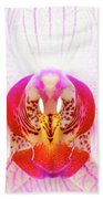 Pink Orchid Beach Towel by Dave Bowman