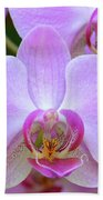 Pink Orchid Beach Towel