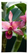 Pink Orchids - Exotic Tropical Glow Beach Towel