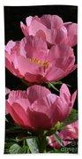 Pink Perspective 0552 Beach Towel