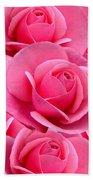 Pink Pink Roses Beach Towel
