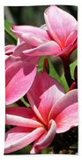 Pink Plumeria Beach Towel
