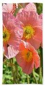 Pink Poppies 2 Beach Towel