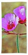 Pink Poppies In Rancho Santa Ana Botanic Garden In Claremont-california Beach Towel