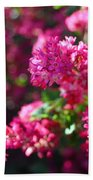 Pink Profusion 1 Beach Towel