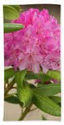 Pink Rhododendron Beach Towel