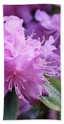 Light Purple Rhododendron With Leaves Beach Towel