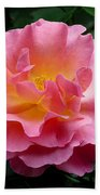 Pink Rose 3 Beach Towel