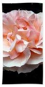 Pink Rose 4 Beach Towel