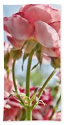 Pink Rose Back Light Beach Towel